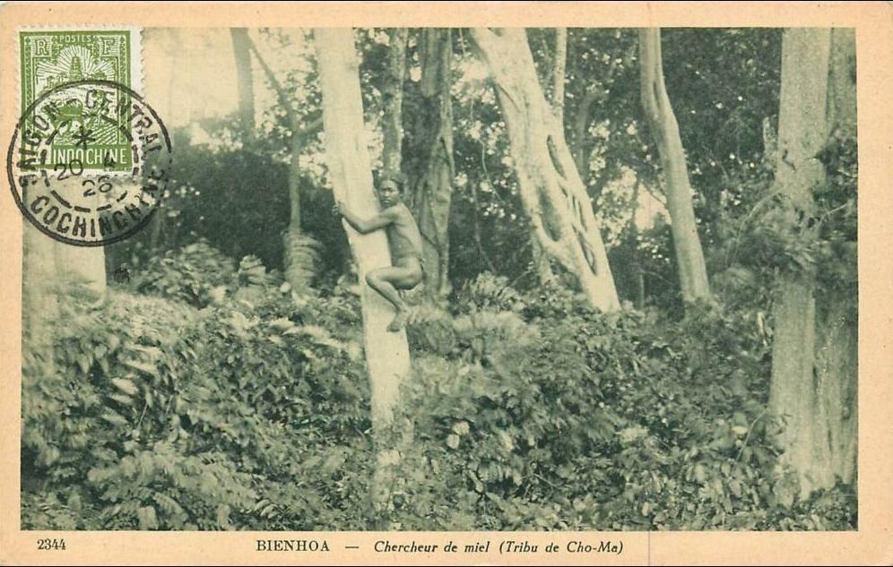-  VIET NAM . BIENHOA . CHERCHEUR DE MIEL . ( TRIBU DE CHO MA ) . ANIMEE . 1928 .