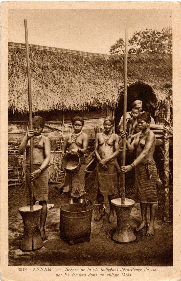 -  Annam. Scènes de vie indigène : décorticage du riz par les femmes dans un village Moïs.