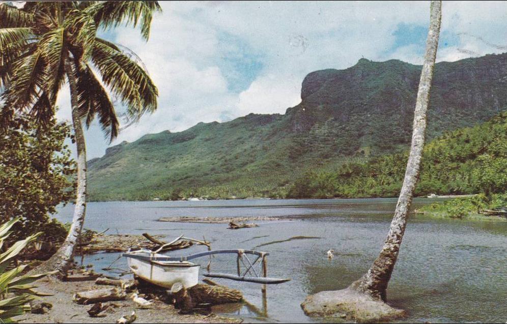 Tahiti -  TAHITI - Paysage à Paopao Moorea Cocotiers Pirogue à Balancier