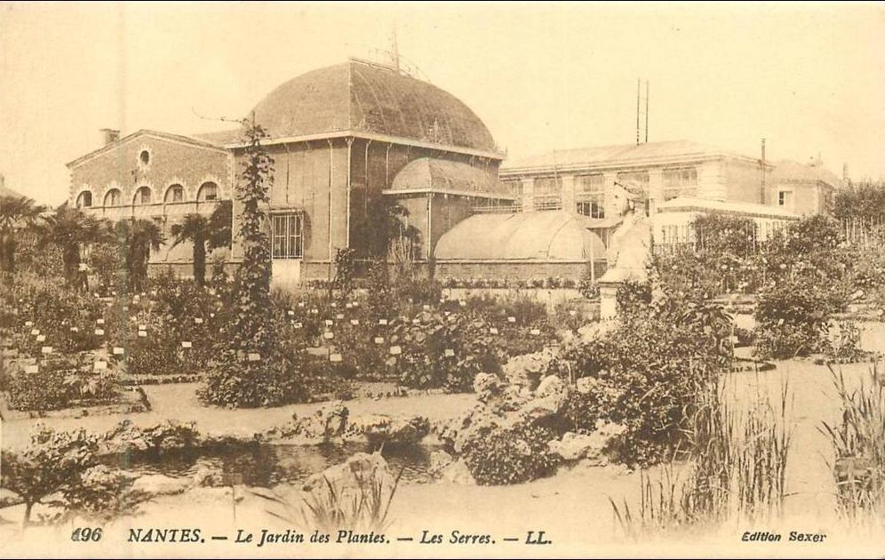 Nantes - 44-142 - CPA NANTES le jardin des plantes les ...