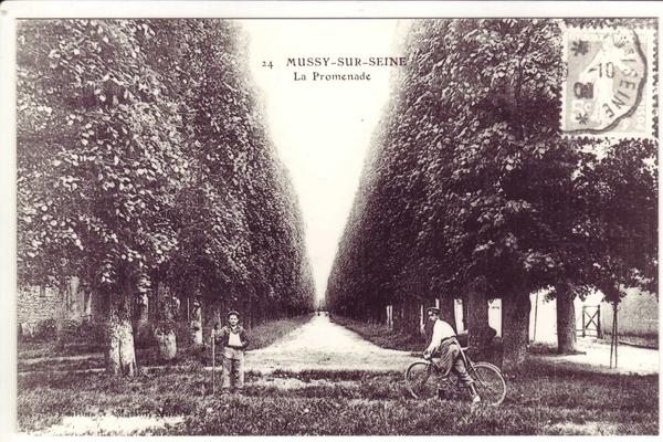 Mussy-sur-Seine - Série de cartes postales éditées par Alfred Martin