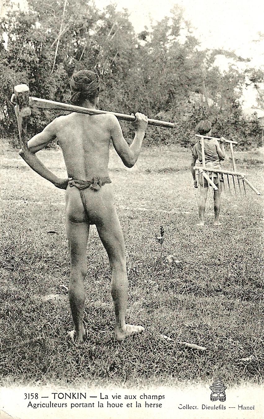 -  Tonkin-Agriculteurs portant la houe et la herse