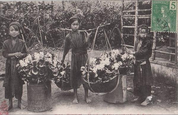 Hanoï - Tonkin. Hanoï. Petites Marchandes de Fleurs. Enfants avec Paniers et Balancier.