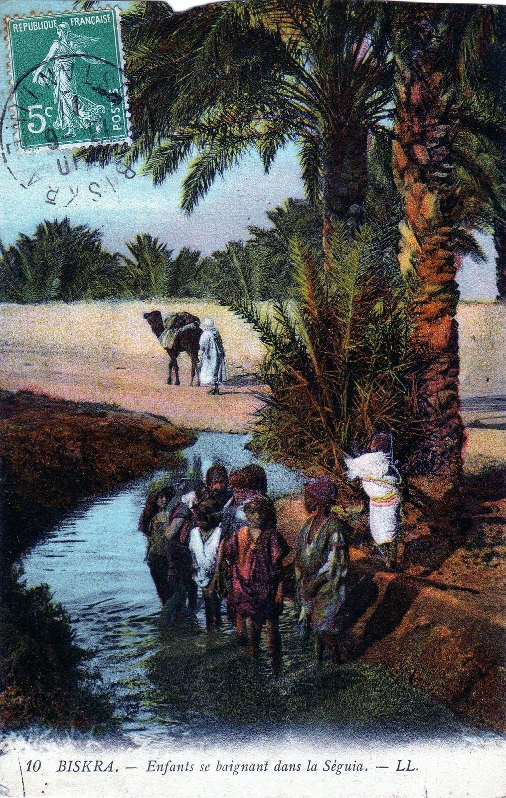 Biskra -  enfants se baignant dans la Séguia