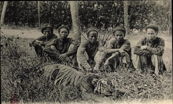 Hanoi - Cp Hanoi Tonkin Vietnam, Les Chasseurs et le tigre qu'ils ont tue