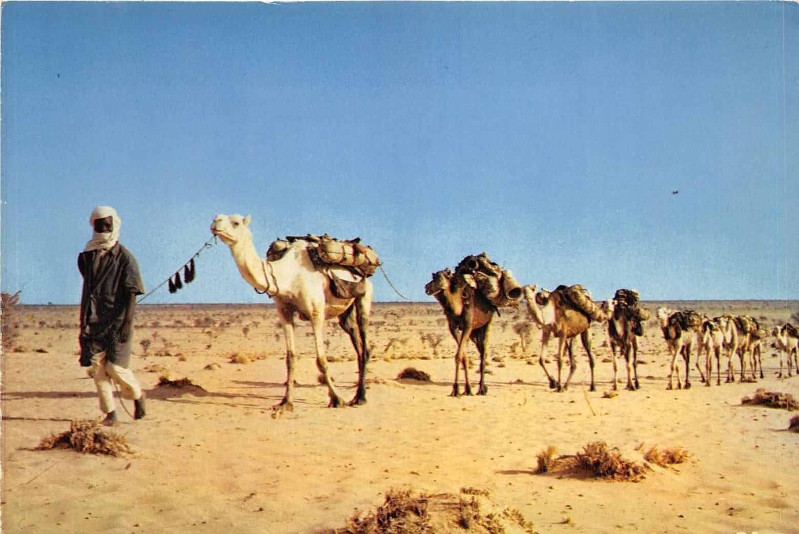 -  Niger - Caravane sur la route d'In Gall