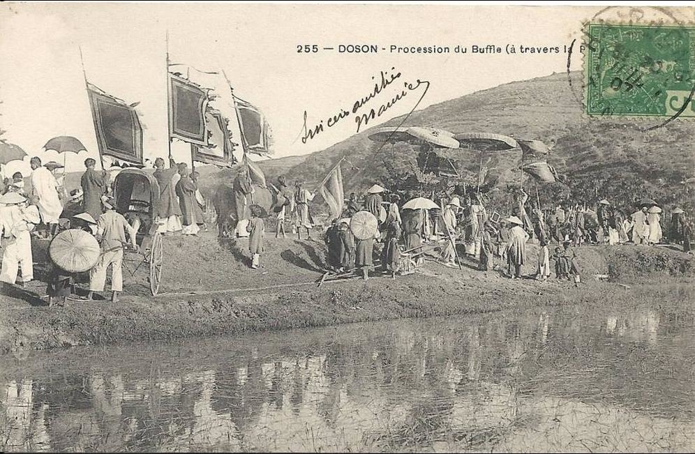 -  TONKIN  -  INDOCHINE FRANCAISE - DOSON  - Procession du Buffle  -  050513 - CPA dos simple