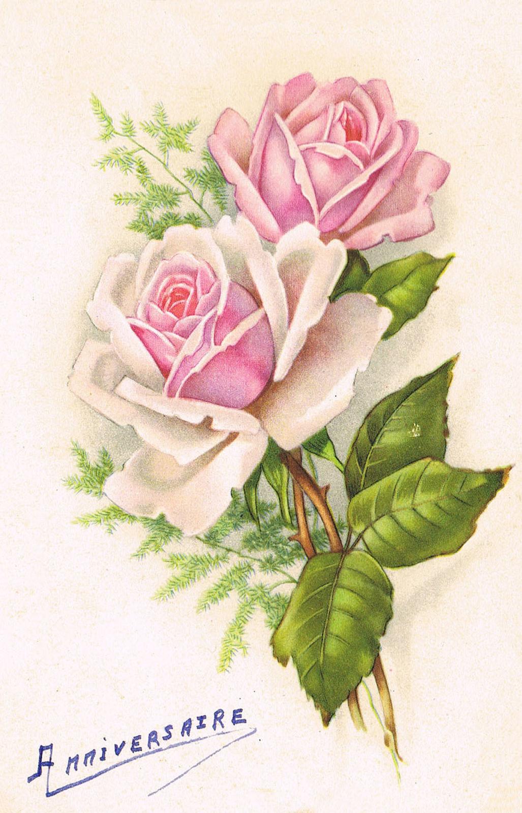 """Cpa """" Bon Anniversaire """" - fleurs - 2 roses - - Carte postale ancienne et vue d'Hier et Aujourd ..."""
