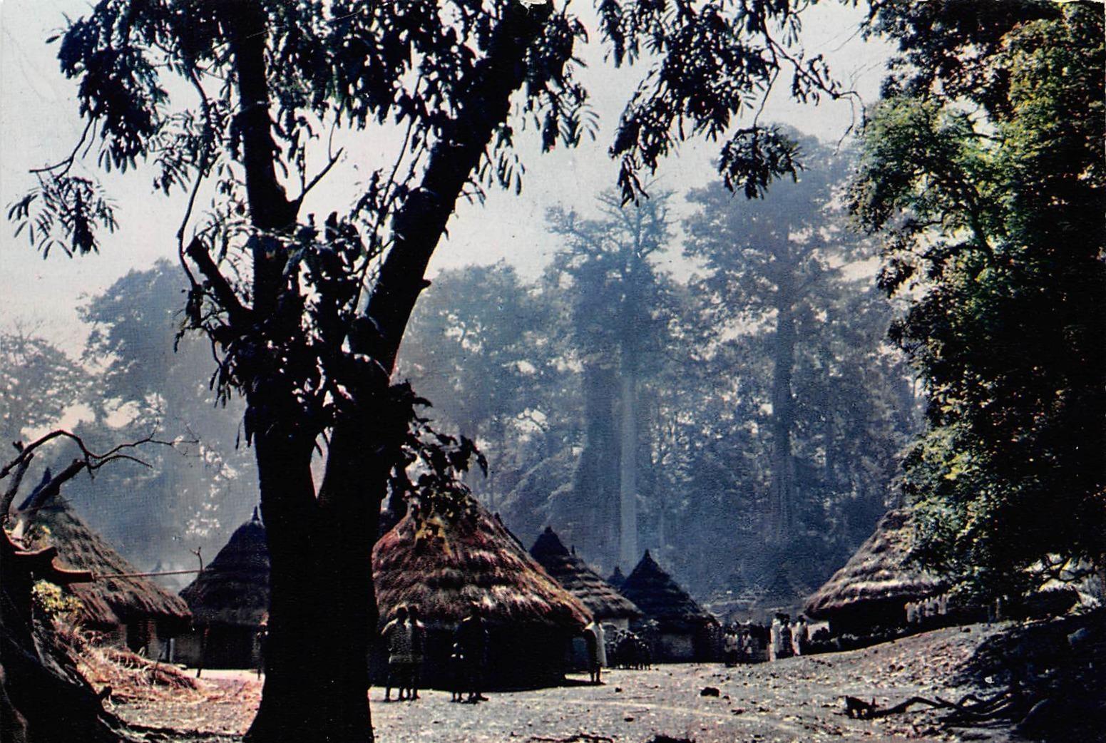 Douala -  CAMEROUN écrite de douala ou yaoudé 29 (scan recto verso)KEVREN06VIC